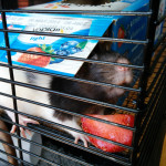 Dot and Mim - adoptable female rats